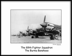 Burma Banshee 231