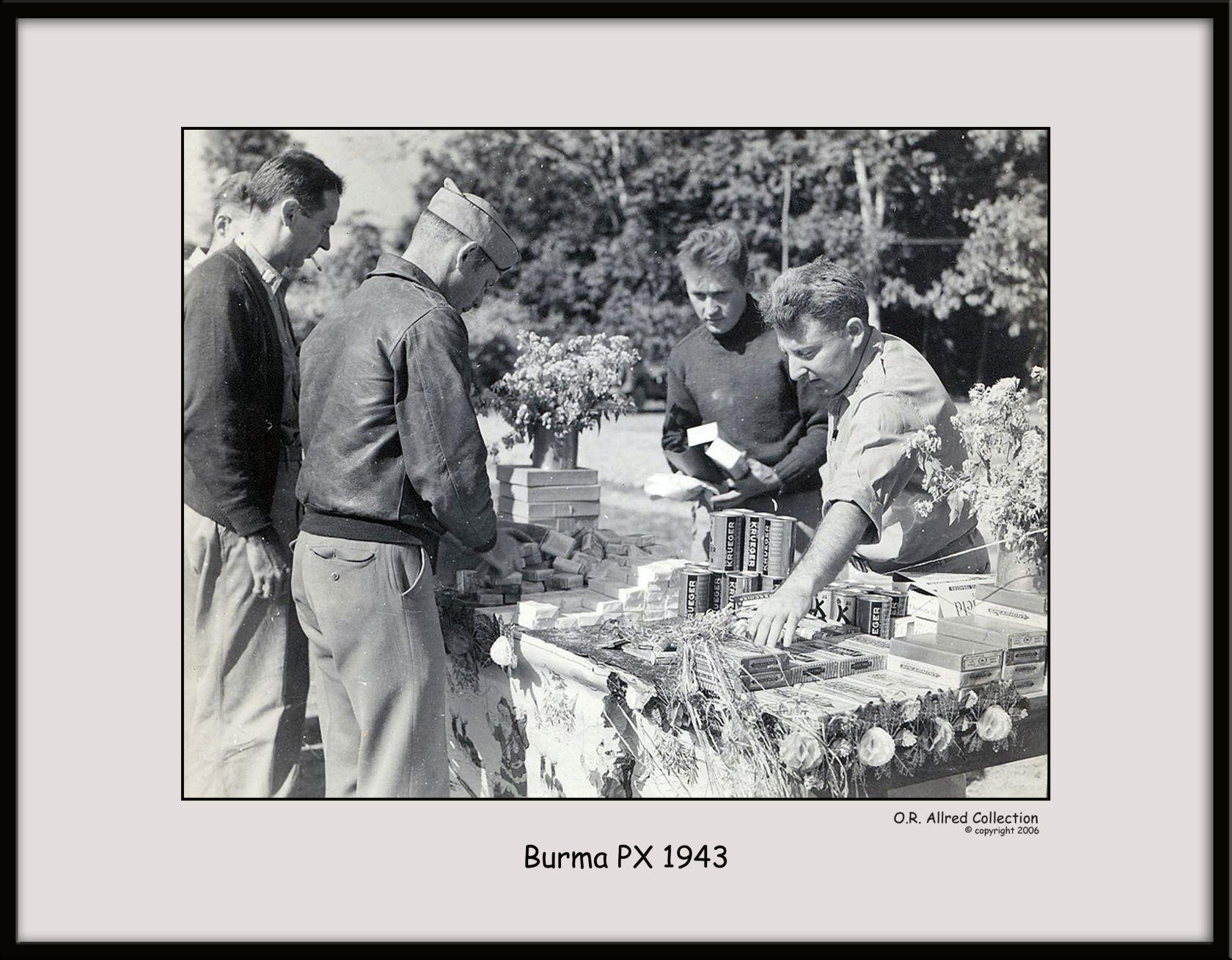 Burmese-PX