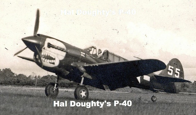 Hal Doughty's P-40