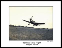 Burma Banshee 107