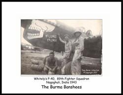 P-40N Flung Dung_Burns coll