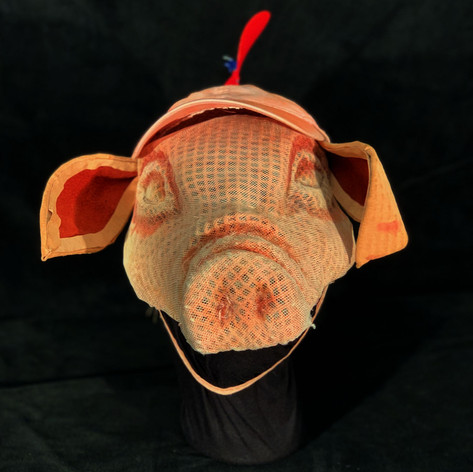 Variform Pig Mask