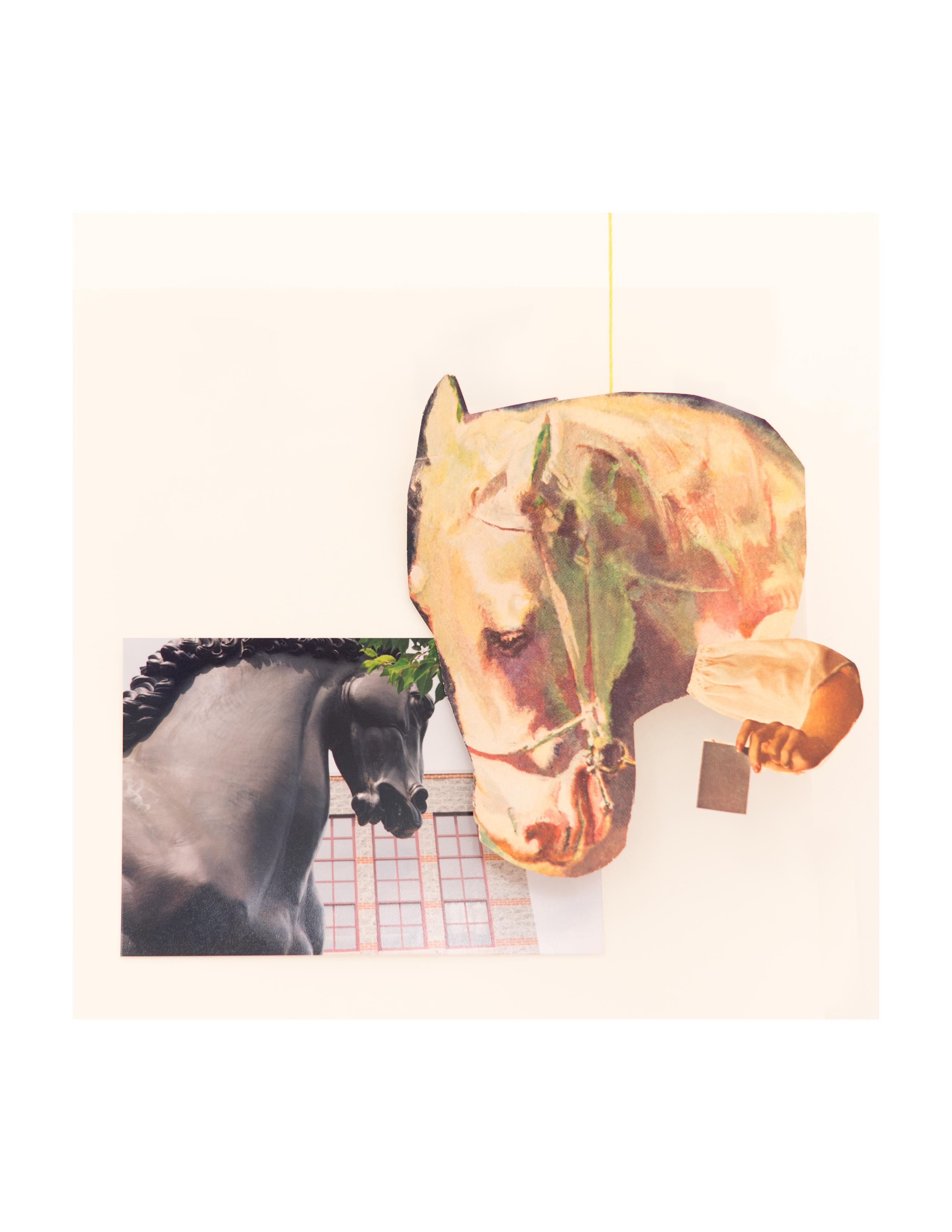 Horse Letter