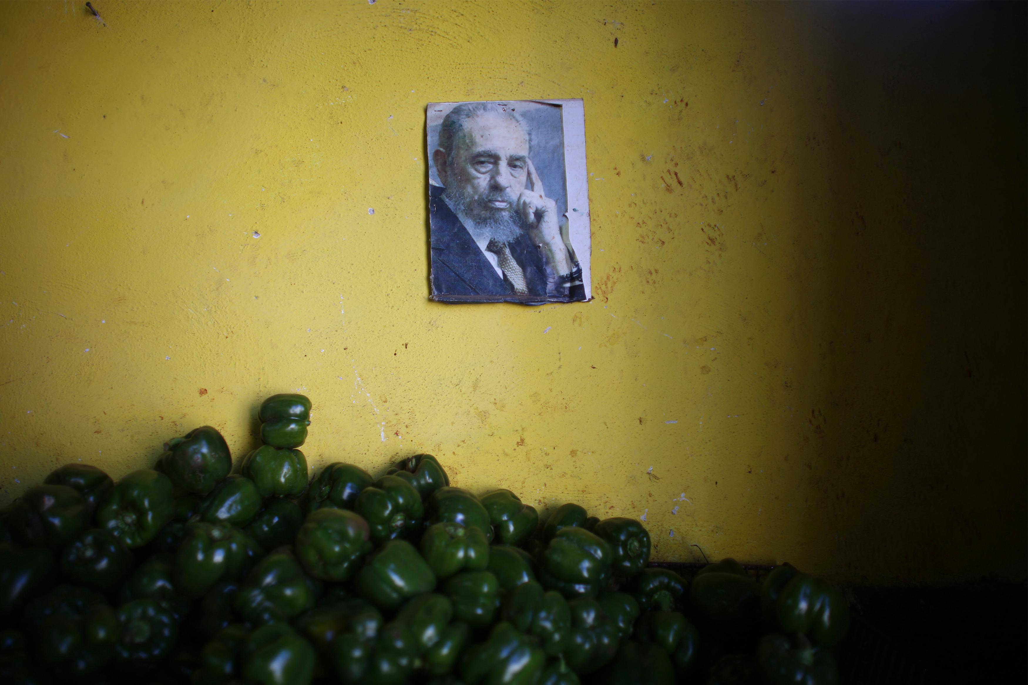 Fidel Castro: a Portrait - series