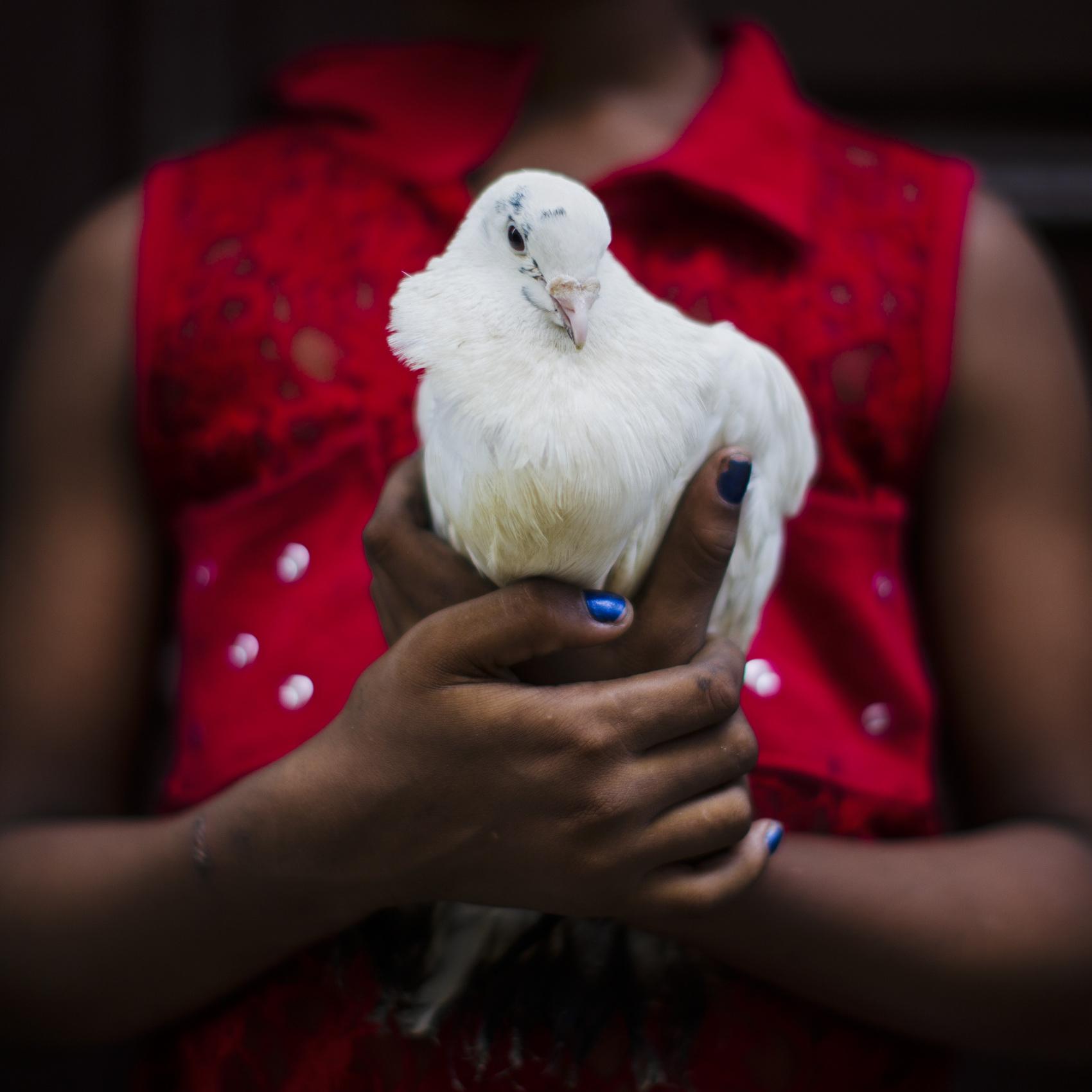 Dove for religion