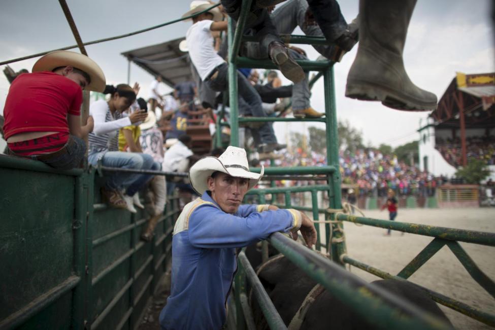 Cuban Cowboys - series
