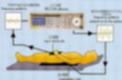 バイコムは周波数で体を調整する