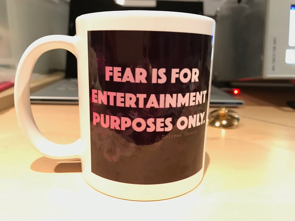 Fear is for entertainment Purposes