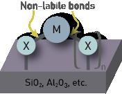8 - non-labile bonds.png