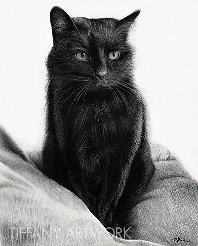 Large Charcoal Portrait, 16x20