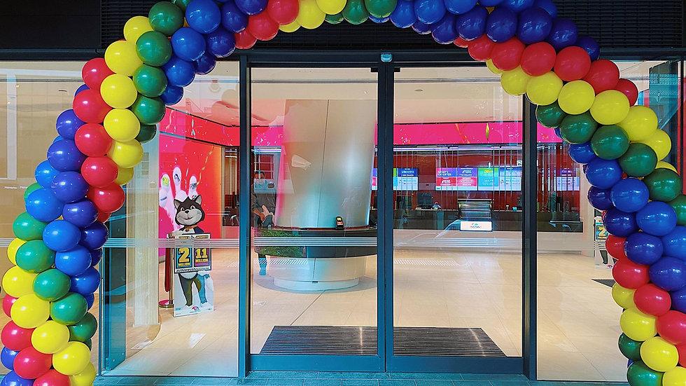 Balloon Arch (5-colour)