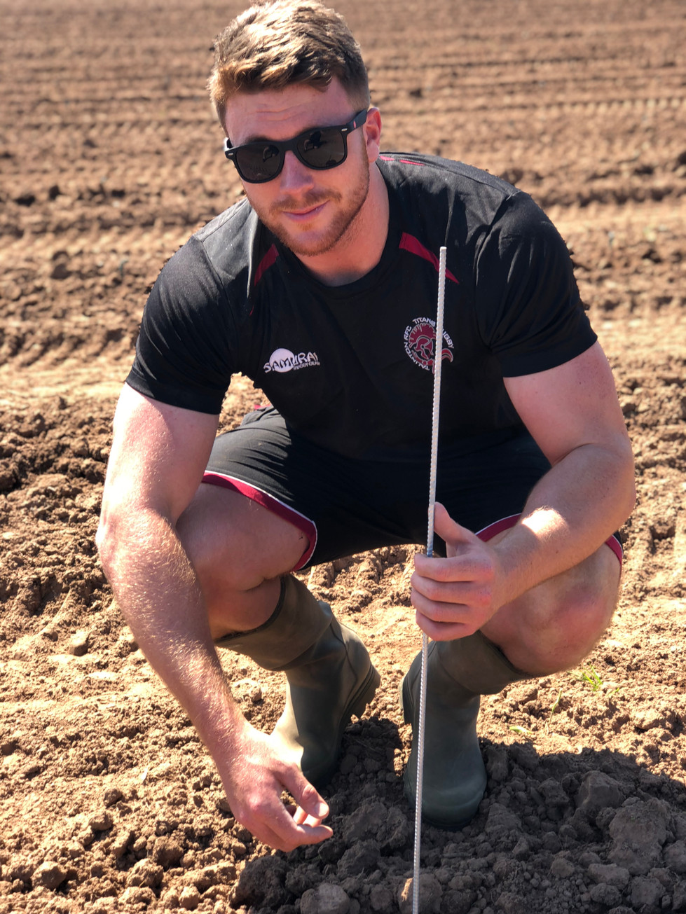 Planting a Vineyard - not as glamorous as you might expect.