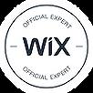 2018_Wix_Expert_Erkan_Gökdağ.png