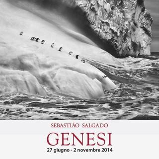 """""""Genesi"""" Sebastião Salgado"""