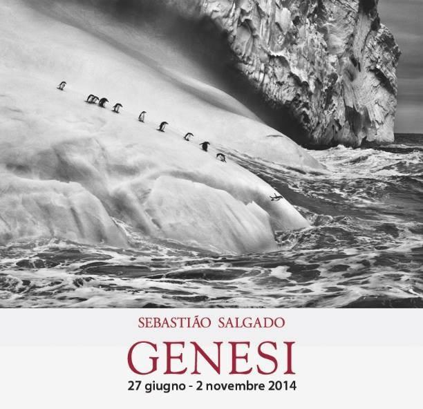 """""""Genesis"""" Sebastião Salgado"""