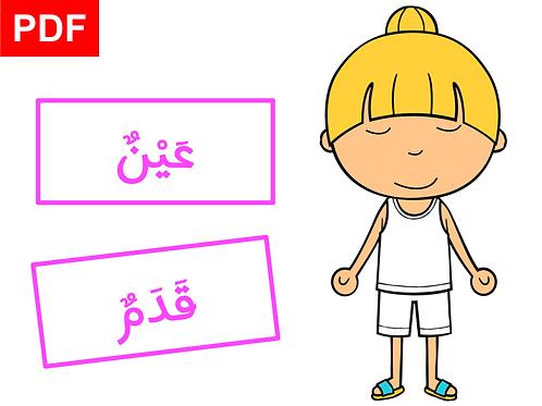 Corps humain en arabe (fille)