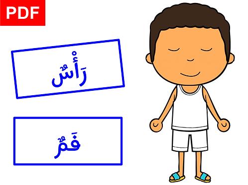 Corps humain en arabe (garçon)
