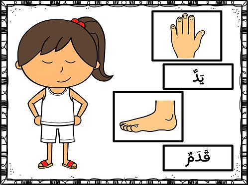 Jeu corps humain en arabe (fille)