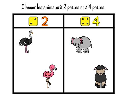 Classer les animaux à 2 pattes et à 4 pattes