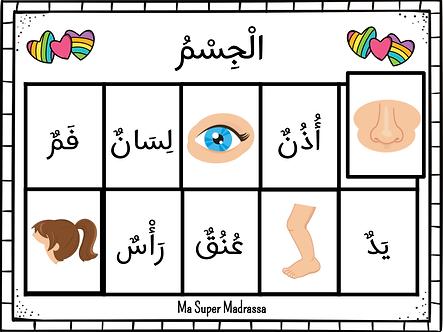 Jeu parties du corps humain (arabe)