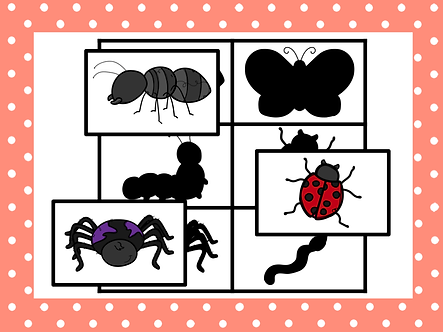 Jeu d'ombres (insectes)