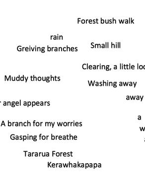 Tararua Forest Tears