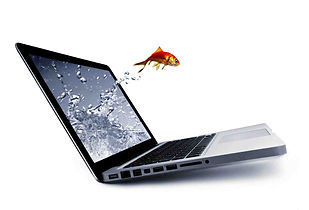 goldfish jumping out of macbook air