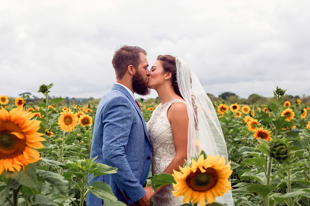 Bride and Groom kiss in sunflower field