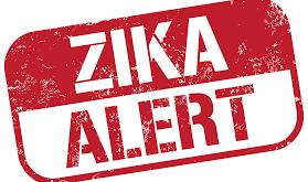 Coding the Zika Virus