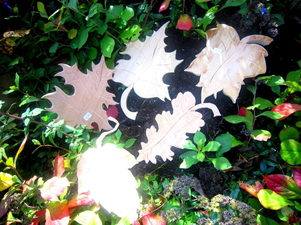 Blätter aus Holz
