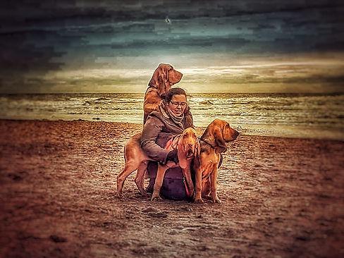 bloodhound puppies on the beach.jpg
