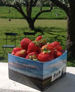 En ask med jordgubbar från Höglunda Gård
