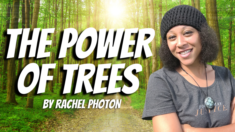 RACHEL PHOTON : ARE TREES and PLANTS CONSCIOUS LIKE HUMANS?