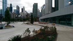 New Maggie Daley Park Fieldhouse