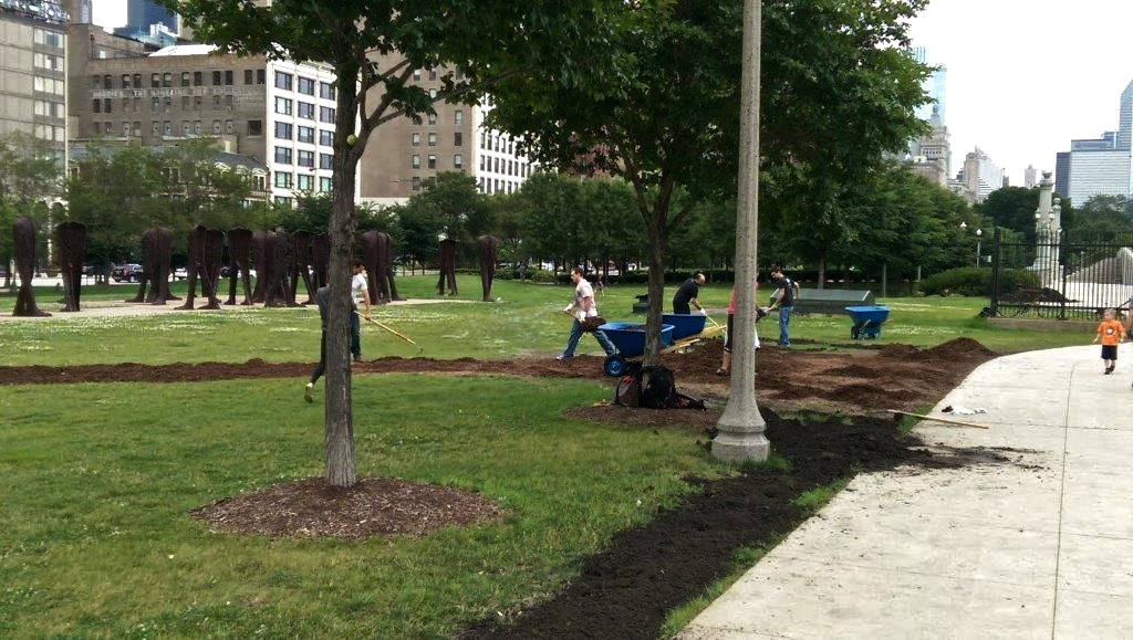 Grant Park Trees Reforestation 1