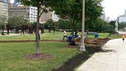 Grant Park Trees Reforestation 1