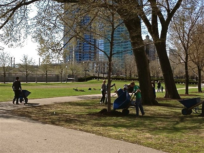 Volunteers Mulch Grant Park Trees
