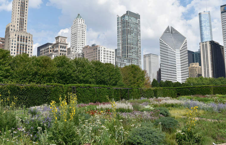 Lurie Garden Chicago Bees
