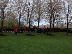 Grant Park Trees Reforestation 9
