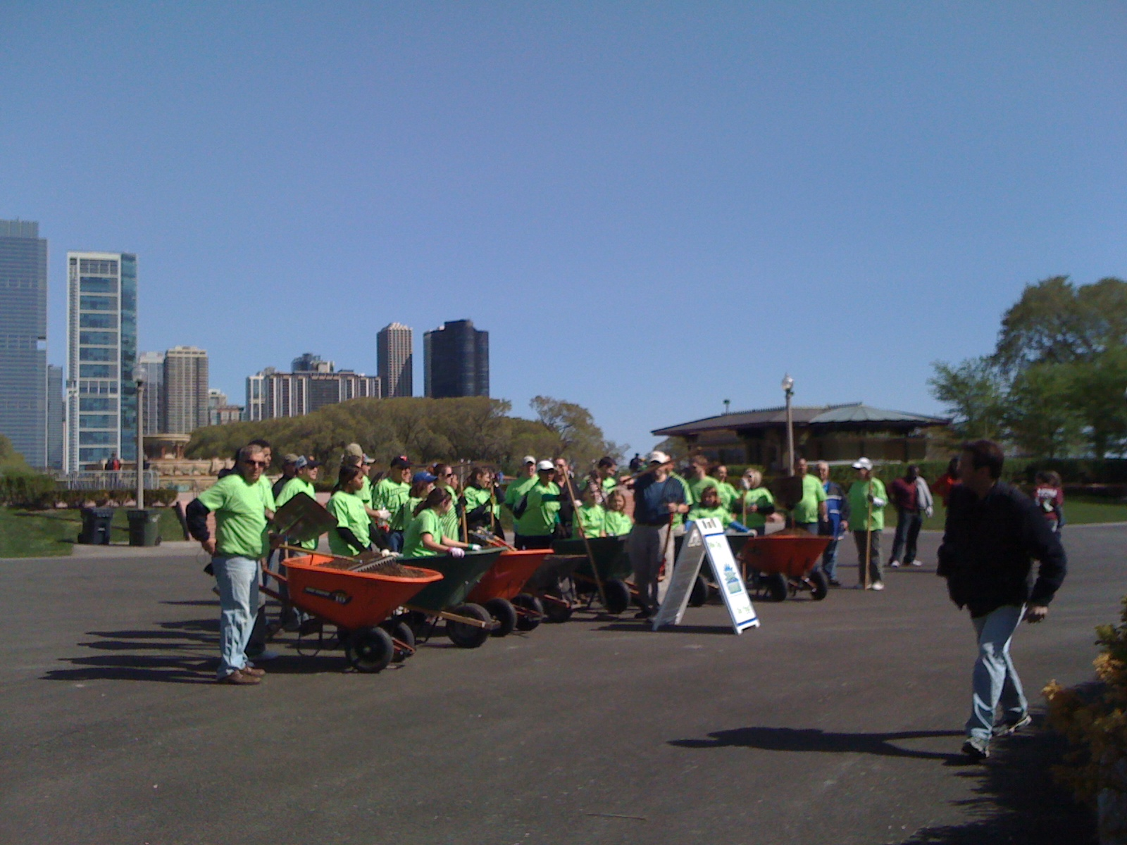 Grant Park Trees Reforestation 6