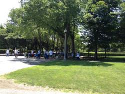 Grant Park Trees Reforestation 7
