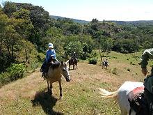 Horsback Riding for Everyone, Cabalgatas guiadas,best guides, boquete Chiriqui panama Beyond Adventure Tours
