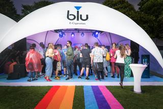 Blu Installation-109.jpg