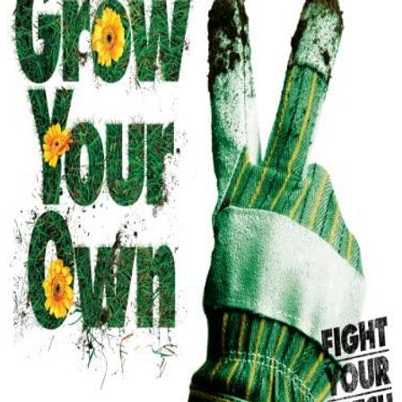 Cinema: Grow Your Own