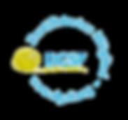 DGSF Logo transparent.png