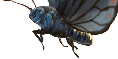 absolem mariposa.png