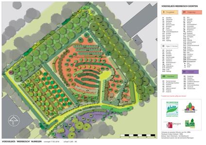 beplantingstekening plan Wouter