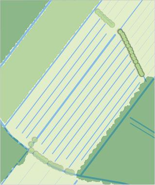 greppelstructuur