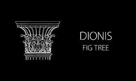 DIONIS candle JPG.jpg