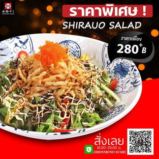 saladshirao.jpg